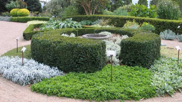 Ground covers and low hedge create a classy space.