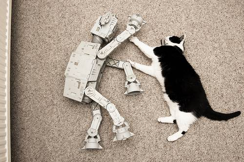 Life of an AT-AT
