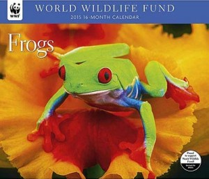 Frogs 2015 Wall Calendar