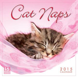 Cute Cat Naps calendar
