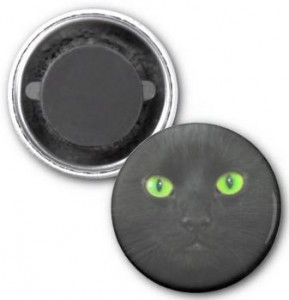 Magical Black Cat Magnet