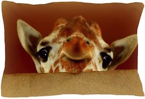 Giraffe Peekaboo Pillow