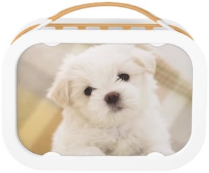White Puppy Yubo Lunch Box