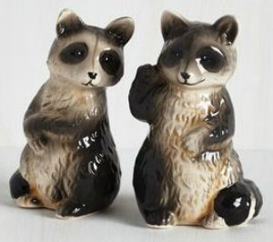 Raccoon Salt And Pepper Shakers