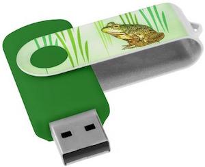 Green Frog USB Flash Drive