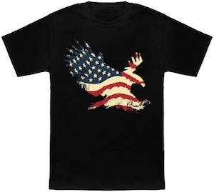 Bald Eagle And The American Flag T-Shirt