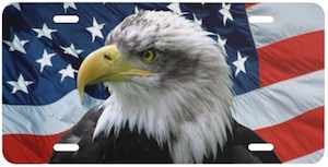 Bald Eagle And The American Flag License Plate