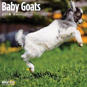 2018 Baby Goats Wall Calendar