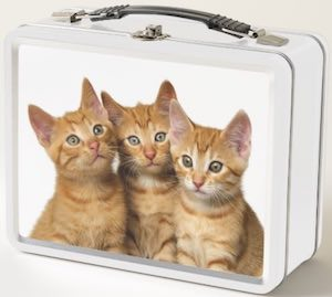 3 Kittens Lunch Box