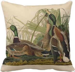 Mallard Duck Pillow