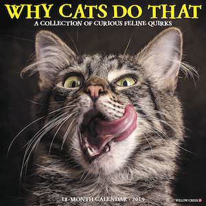 2019 Why Cats Do That Wall Calendar