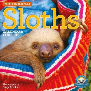 2020 Hanging With Sloths Wall Calendar