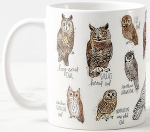 Many Owls On A Mug