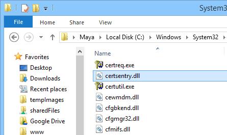 establishing-secure-connection-find-dll-file