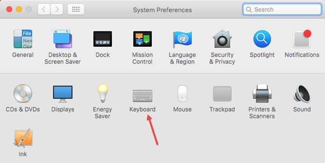 mac-os-turn-off-auto-correct-system-pref