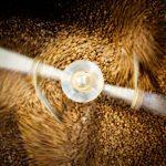 roasted coffee minnesota