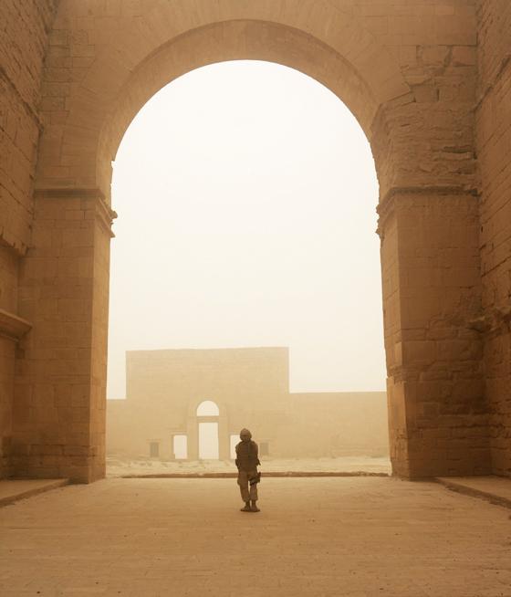 stunningmesh-best-pic2008-img5