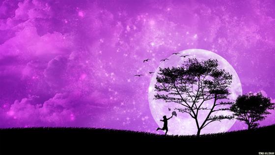 Beautiful Romantic Moonlight Wallpaper