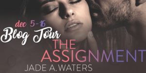 the-assigment-blog-tour-300x150