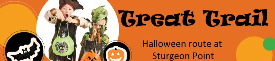 Halloween_treat_banner