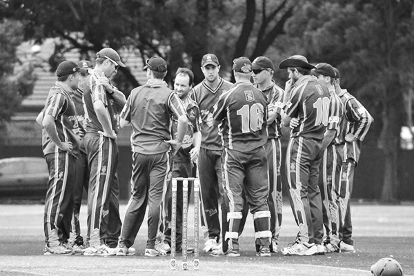 SACA Premier Cricket