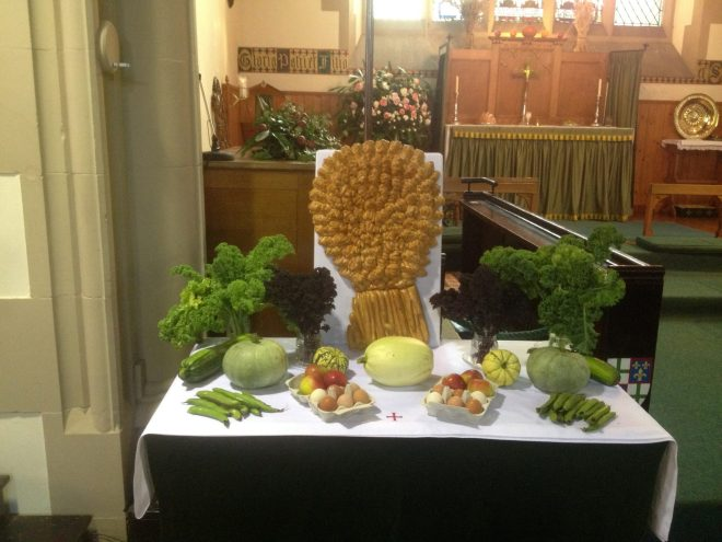 Harvest Table 01