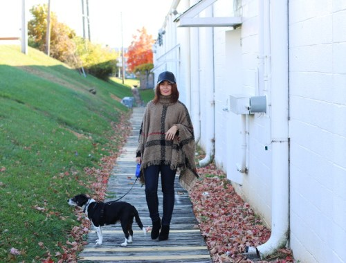 Sammy dress, plaid poncho, fall outfit, fashion, ootd, dog, pet outfit
