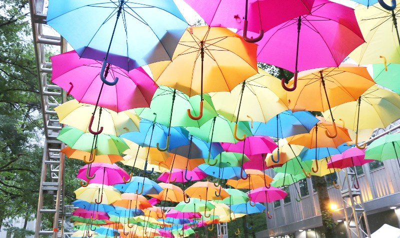 Colorful Umbrella Summer