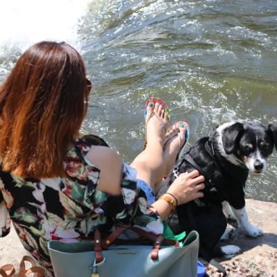 pink-blush-cold-shoulder-top-dog-river