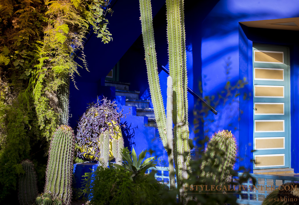 top things to do in Marrakech Morocco