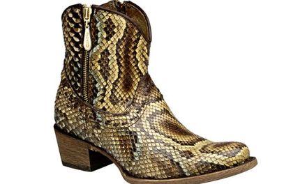 Cambios en regulación del calzado exótico en México