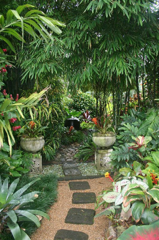 Top Tropical Backyard Garden Ideas - Stylendesigns on Tropical Small Backyard Ideas id=11504