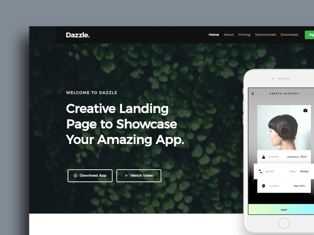 Free Website Template - Dazzle 01