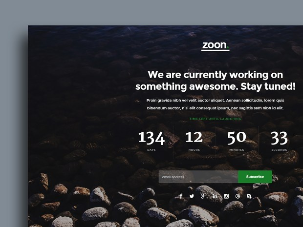Free Website Template - Zoon 01