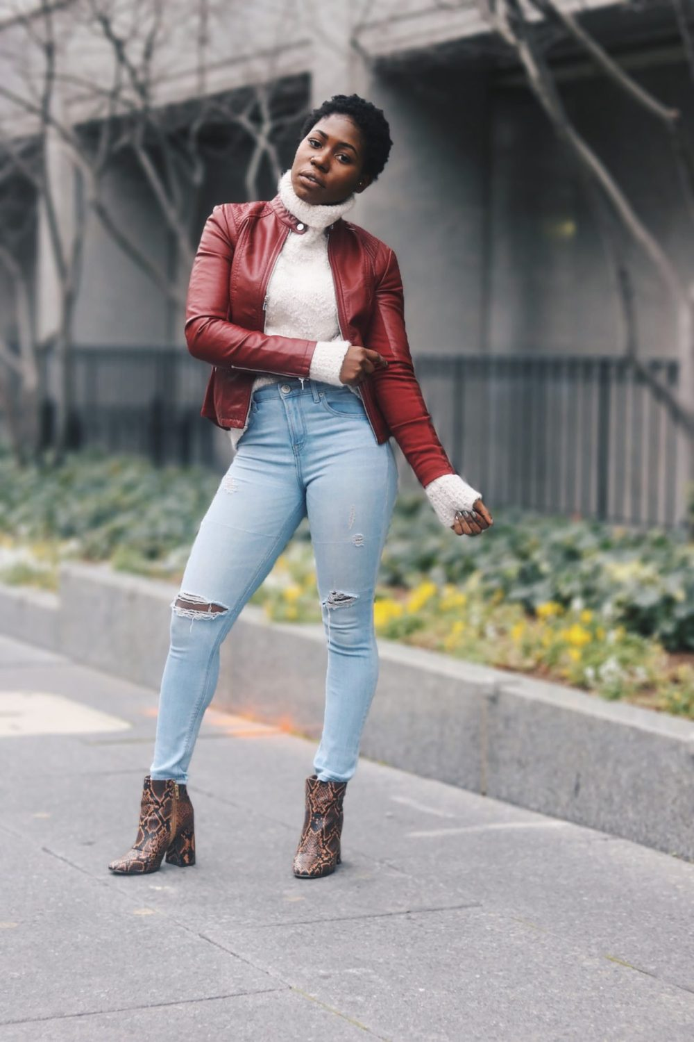 style-synopsis-destroyed-high-wasit-jeans-snake-skin-boots
