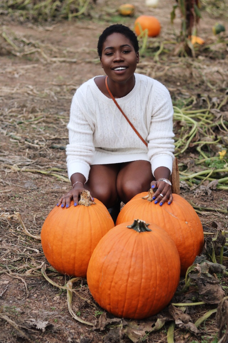 FUN-FILLED PUMPKIN PATCH EXPERIENCE
