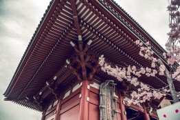 My Japan Trip Changed Me: A Photographic Japan Guide PART I 8