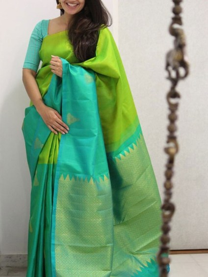 Gorgeous Silk Saree designs for women (5)