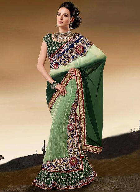 Panelled design-saree