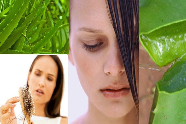 Home remedies for healthy Hair with Aloe Vera