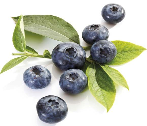 Blueberry Goodness for health hair