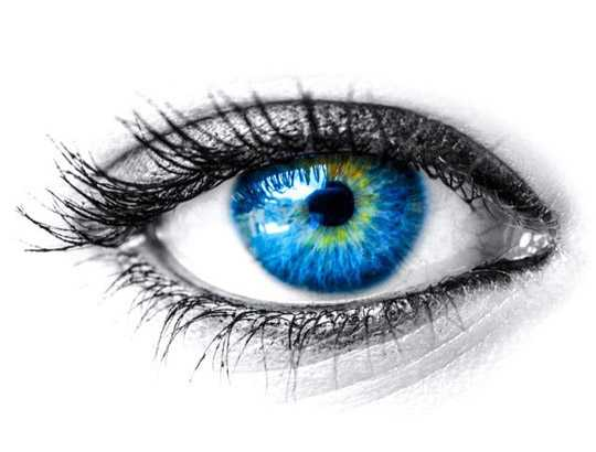 Eye Health with Okra