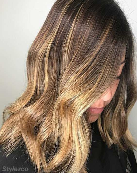 Elegant Look of Honey Shade Hair Color & Inspiration