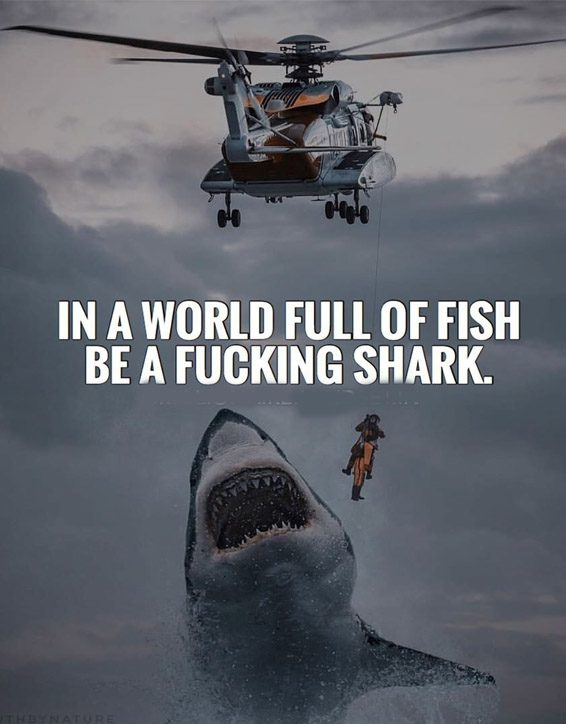 In a World Full of Fish - Ever Best Quotes for Everyone