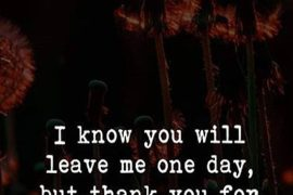 I Know you will Leave Me - Best Leaving Quotes & Sayings