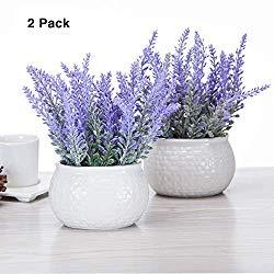 Artificial Mini Potted Flowers Plant Lavender