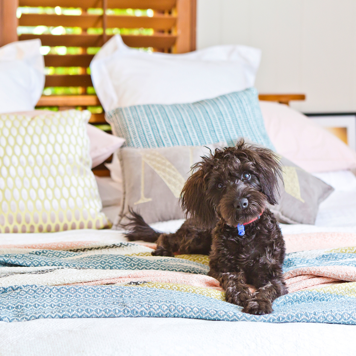 8 tips for styling your bed for an awesome Clean Sheet Day | Marks & Spencer (Australia)