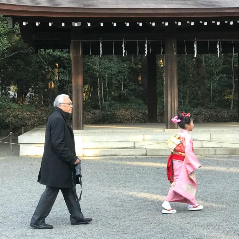 Meiji Shrine, Tokyo Japan
