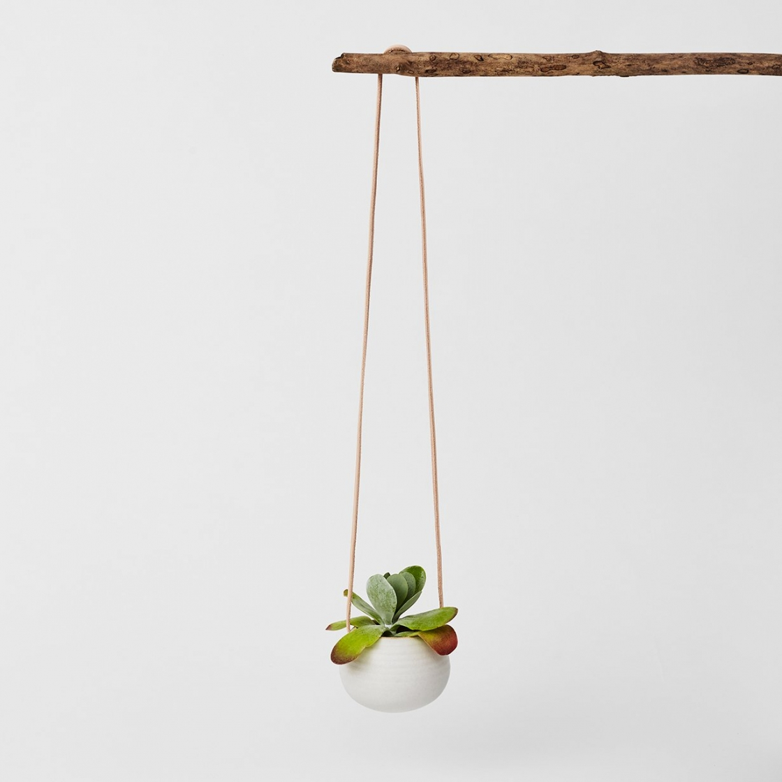 7 Hanging Plant Pots To Give Your Plants A Stylish Edge