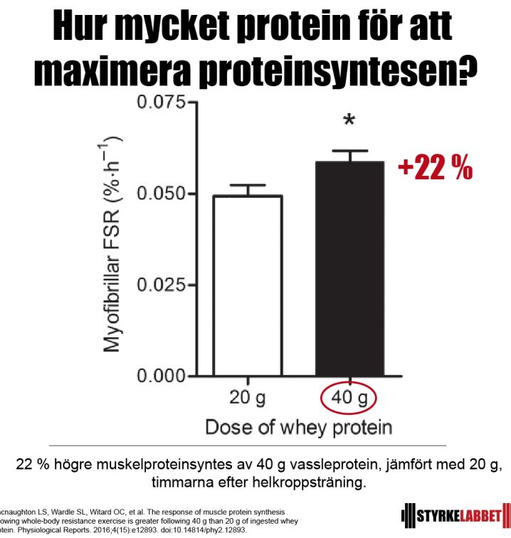 Maximera proteinsyntesen
